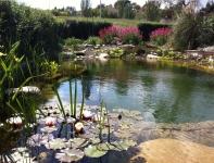 Jornadas JIWAPOP 2014:'Estanques Naturales de Baño'
